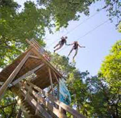 Activité à Indian Forest