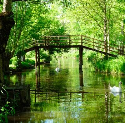 Pont dans le marais poitevin